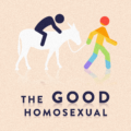 The Good Homosexual