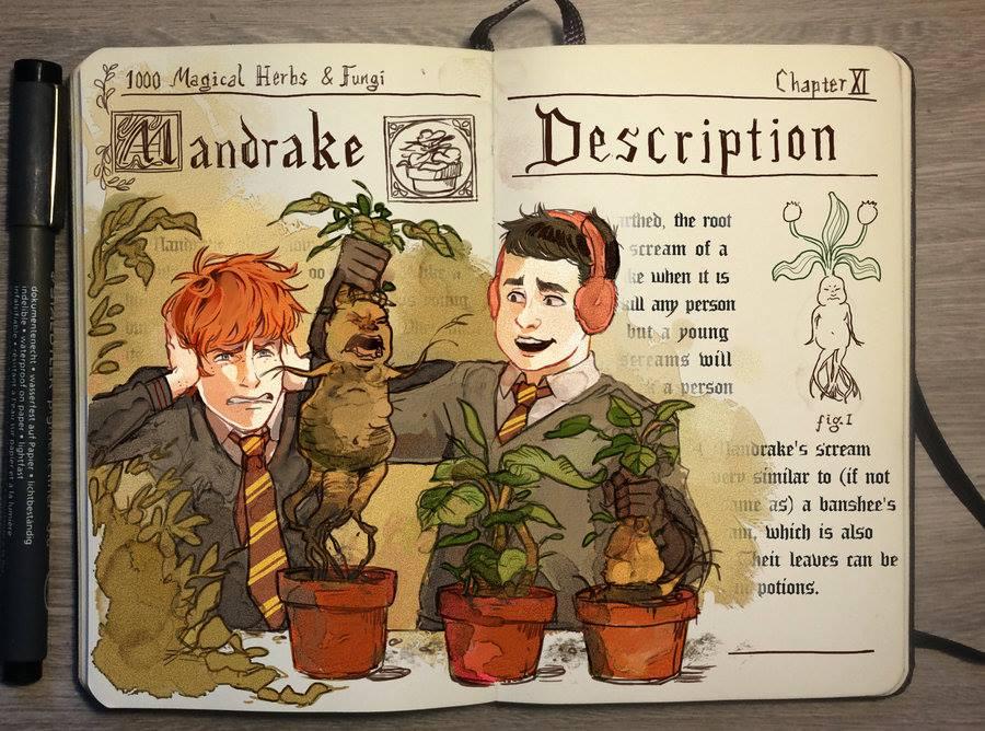 Mandrake illustration by Gabriel Picolo