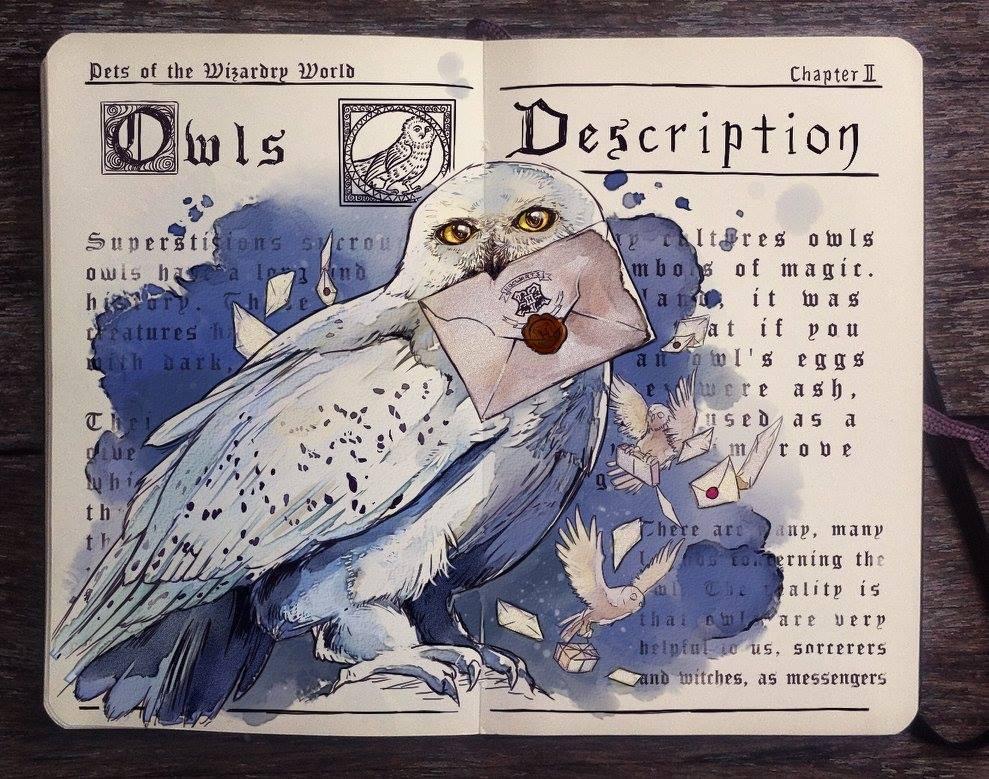 Owls illustration by Gabriel Picolo