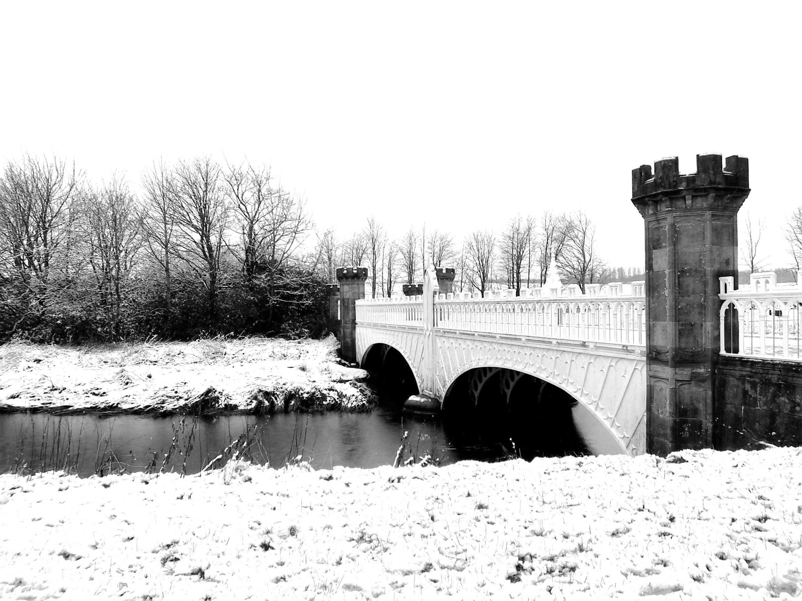 Tournament Bridge